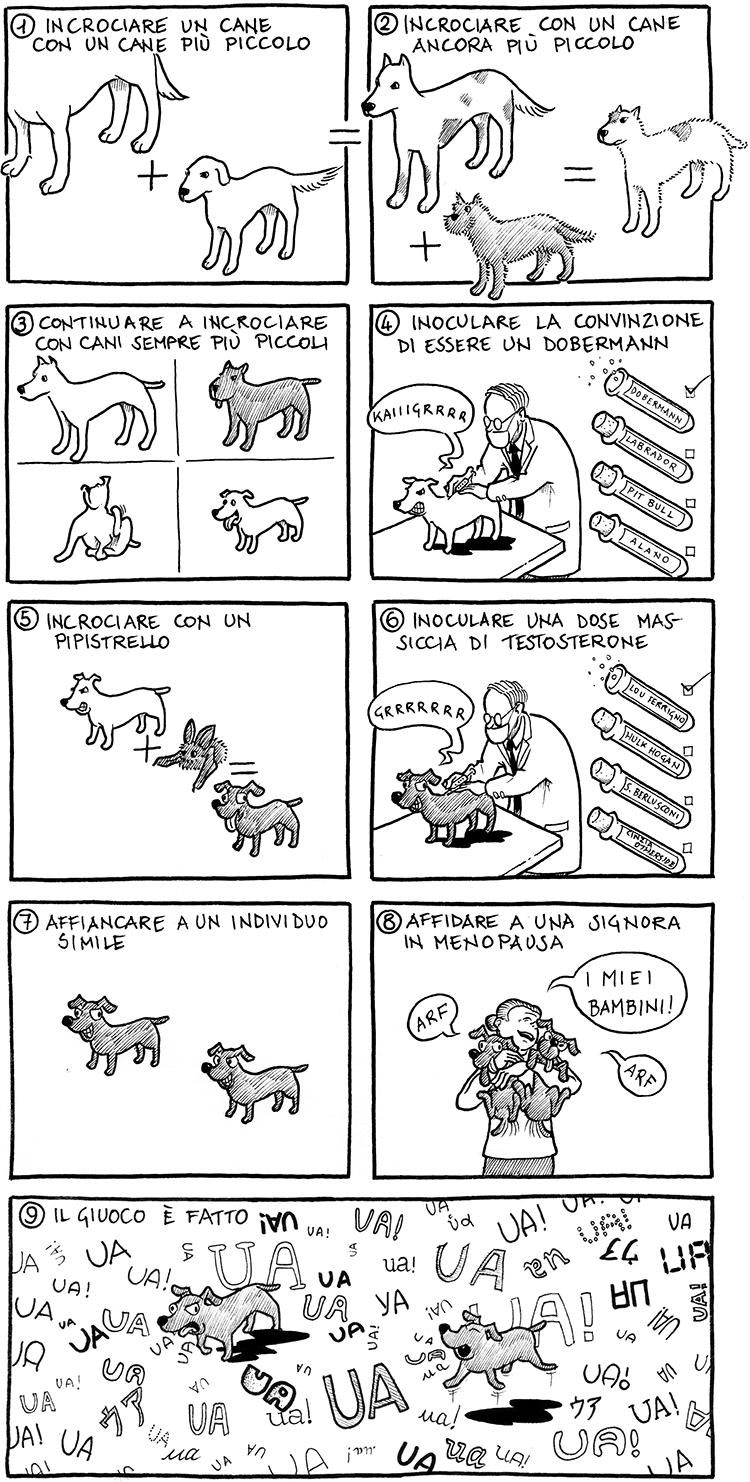 cani rompicoglioni